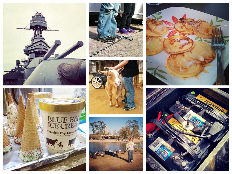 This Week On Instagram Dec 28-Jan 3