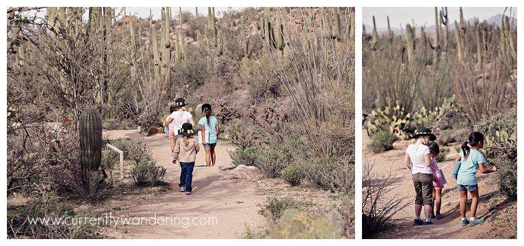 Saguaro National Park_004