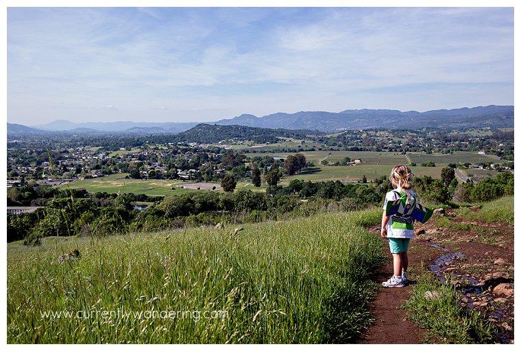 Hiking in Napa_004