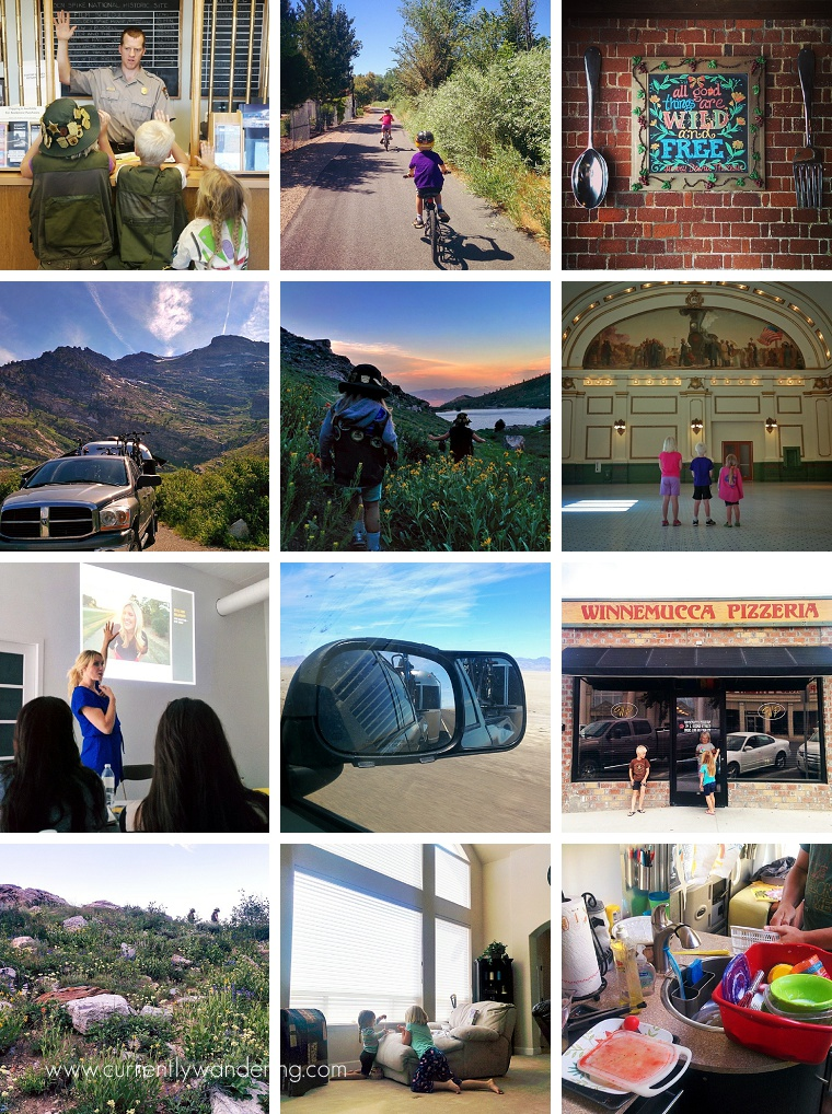 This Week on Instagram July 13-19 2014