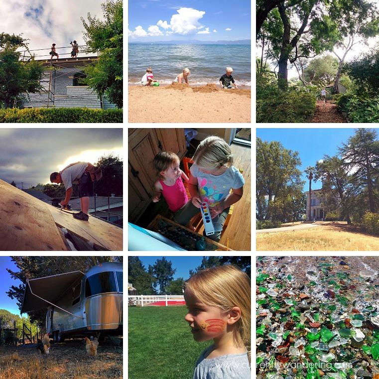 This Week on Instagram July 20-26 2014