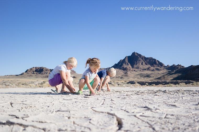 Utah Salt Flats_23