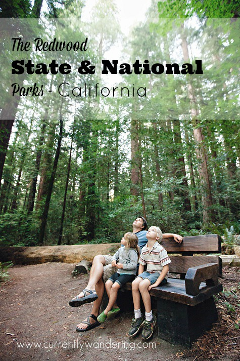 We spent 2 weeks exploring The Redwood State and National Parks in California. Check out our favorite activities!