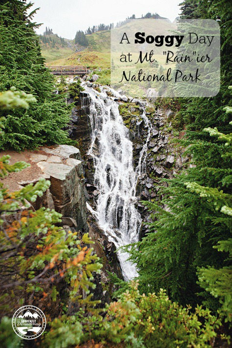 A Soggy, yet beautiful day spent at Mt. Rainier National Park in Washington!