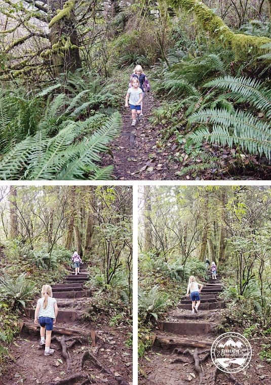 Cascade Head Hike_01