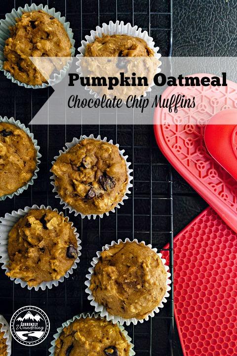Pumpkin Oatmeal CC Muffins