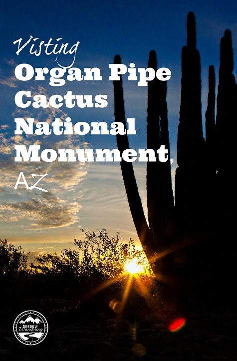 This National Monument is the only place in the United States where you can find Organ Pipe Cactus! Go and see our adventure to know why you should add this place to your bucketlist!