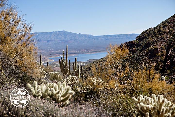 Arizona Cliff Dwellings_02