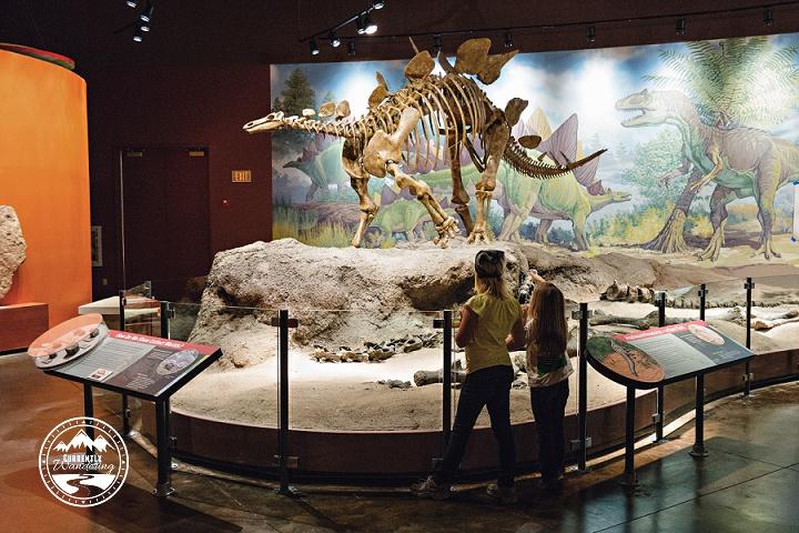 Dinosaur National Monument_16